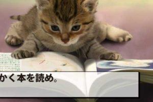 読書で学びを得る方法